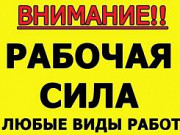 Грузчики / грузоперевозки / разнорабочие Смоленск