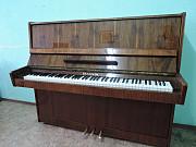 Аренда (прокат) музыкальных инструментов Минск