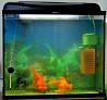 Продам аквариум на 90 литров с телескопами