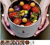 Экзотические фрукты в элегантной упаковке – вкусный подарок