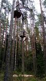 Йога, прогулки в лесу Санкт-Петербург