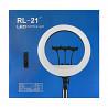 Кольцевая лампа rl21 54 см + штатив 2м