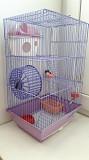 Клетка для хомячка Мурманск